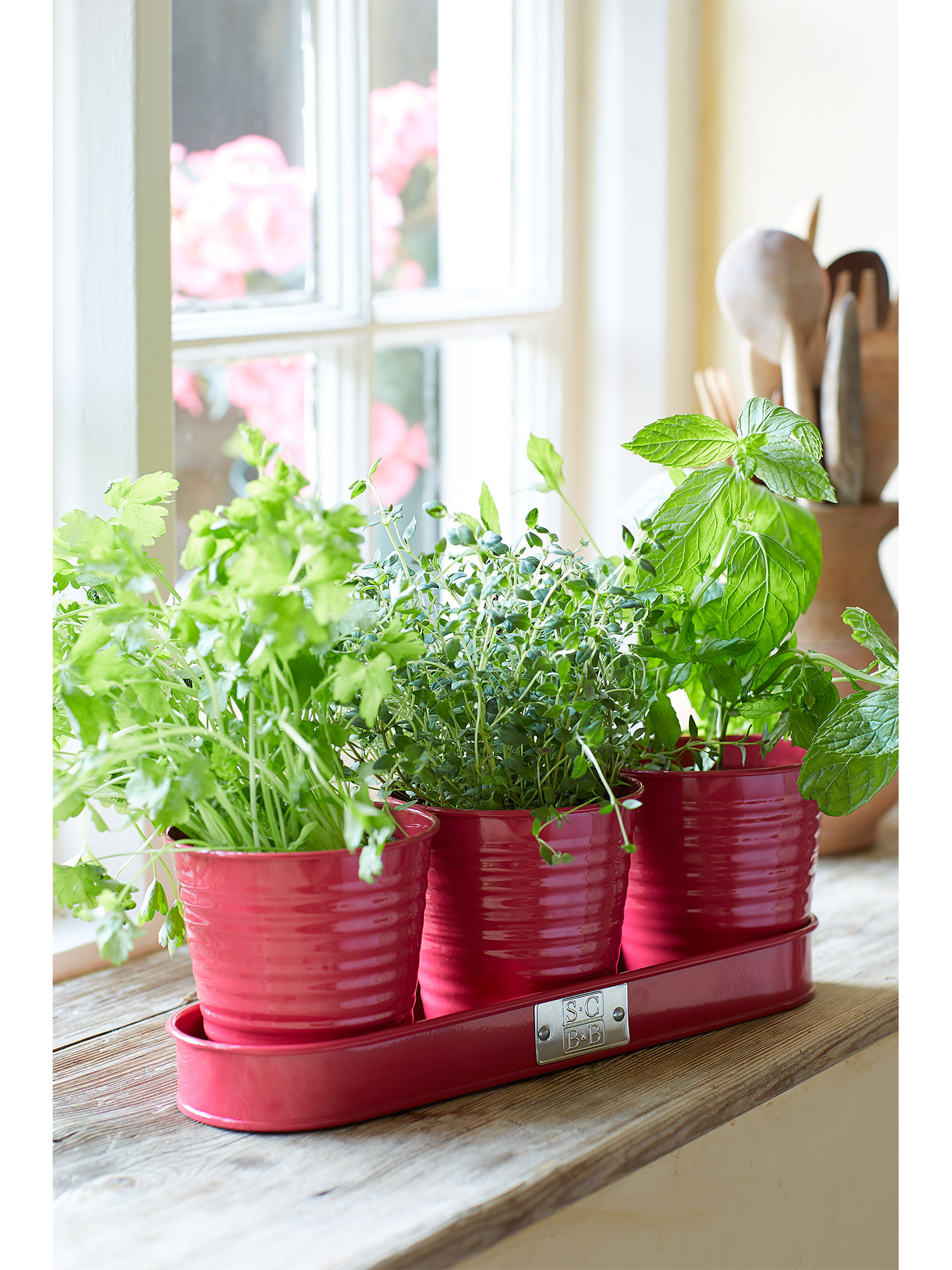 100 kitchen herb pots tip tuesday u2013 portable kitchen he